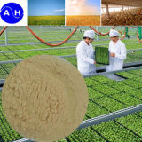 Gehydroliseerde Plantaardige Aminozuren 40% 60% Zuivere Organische Aminozuren