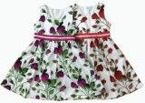 Vestir de los niños vestido de niña vestido de la falda del bebé, desgaste de los niños (SQD-108)