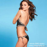 Fashion Bikini Sexy Swimsuit der Großhandelsdame