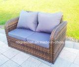 Indicare la mobilia esterna del giardino del rattan (GN-9103-1S)