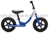Ausgleich-Fahrrad