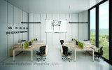 Stazione di lavoro lineare dell'ufficio dello scrittorio delle 6 sedi della persona con il piedino del metallo (HF-RSD028)