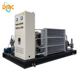 Parafuso Type 10nm3/Min max 25bar Natural Gas Compressor