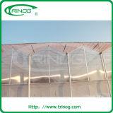 Парник поликарбоната в структуре venlo для сбывания