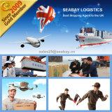 Agente de transporte profissional do mar de Shenzhen a Felixstowe Reino Unido