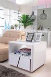 フランス様式の居間の家具セット(2015#)