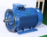 Ie3/Ye3 Series Highquality Three Phase WS Electric Motors0.55kw ~ 315kw