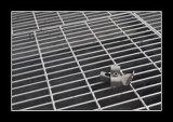 Galvanizado soldada 35 * 5 Barra de acero Reja