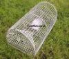 De milieuvriendelijke Vouwbare Kooien van de Eekhoorn van het Netwerk van de Draad van het Metaal/van de Val Mice/Skunk/Hamster