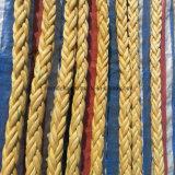[بف] وافق 12 طاق إرتفاع يقوّس [أوهموب] حبل