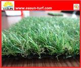 [ببّ] مادة يرتّب رياضات عشب اصطناعيّة