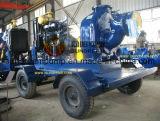Pompe à eau du moteur Sw & Series Sw & Swh pour l'application d'irrigation