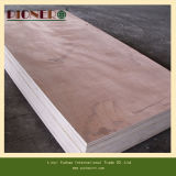 Дешево 18mm Poplar Commercial Plywood