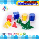 Preescolar Solid Geometry Laboratorio de Ciencias Conjunto plástico de múltiples funciones juguetes educativos Conjunto 12PCS. Modelo geométrico (equipo educativo)