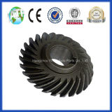 Alta qualità Final Gear con Crown Wheel e Pinion Gear