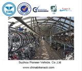 두 배 Decker 자전거 선반 (궁극적인 공간 절약)