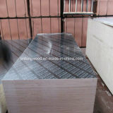 Pellicola Faced Plywood Marine Plywood per Construction