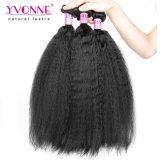 ブラジルのバージンの毛の拡張卸売の自然な毛