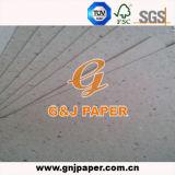 Papel del carrete de la buena calidad usado para la producción de papel del tubo