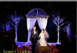 5 * 7m Star Curtain Light com CE