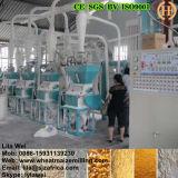 Máquina de trituração fina super do milho da farinha de milho 20t/24h