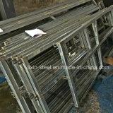Marco prefabricado ligero movible de la construcción de viviendas de la estructura de acero