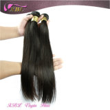 Seidiges Straight 8A Grade Hair Extension Cheap brasilianisches Hair Weave