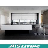 Muebles modernos de la cabina de cocina de la dimensión de una variable de la galería de Foshan (AIS-K080)