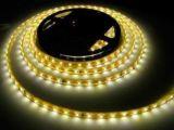 5050 WW+W LED Leisten/verdoppeln weißes LED-Streifen-Licht