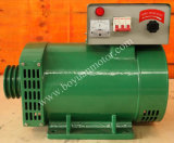 St Single-Phase / Stc trifásico CA Home Generator Carbon Brush