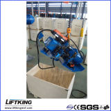 Alzamiento de cadena LIFTKING 5t Dual Speed ​​eléctrico con suspensión Hook