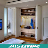 Projeto extraível estratificado personalizado do armário do Wardrobe (AIS-W192)
