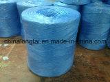 Corde de empaquetage d'agriculture (300M/kilogramme, 500M/kilogramme, 1000M/kilogrammes)