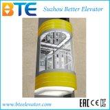 Gute Dekoration-panoramischer Aufzug des Cer-630kg ohne Maschinen-Raum