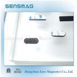 Insigne nommé magnétique personnalisé par fabrication d'aimant de NdFeB avec différentes couleurs