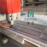 Fabricación de China para el patín del policarbonato del claro del cabrito basado en fichero de gráfico