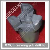 Dígito binario de taladro de la carrocería de acero PDC del diámetro de la alta calidad 75m m