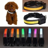 LED Lighting Solar Power und USB Charing Nylon Pet Cat Dog Collar Light für Small Medium Large Dogs