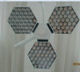 Sy02-LED3+3 Osram LED CER zugelassene chirurgische Lichter