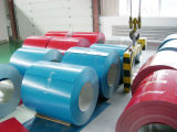 Farbe Coated Steel Coil mit Best Price