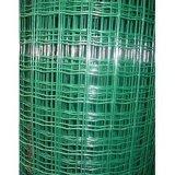 PVCによって塗られる溶接された金網(ZSTEEL-004)