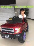 De Elektrische Auto van de Auto van de Afstandsbediening van de Roofvogel van de doorwaadbare plaats voor Kinderen