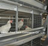 H-Feld-Schicht-Huhn-Rahmen-Gerät