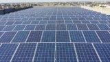 Modulo monocristallino 325W del comitato solare