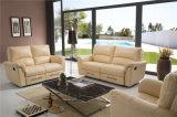 Wohnzimmer-Sofa mit dem modernen echtes Leder-Sofa eingestellt (790)