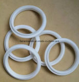 PTFE 피스톤 Ring&Guide 반지