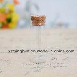 Bouteille en verre de tube de fiole de Borosilicate avec du liège