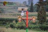 indicatore luminoso di via solare del giardino di 12W IP65 LED con il sensore di movimento