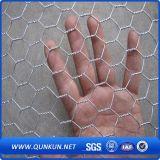 Compensation hexagonale de treillis métallique du meilleur poulet de produit