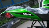 CEE Racing Motorcycl de 250cc New Design (GM250-21A)